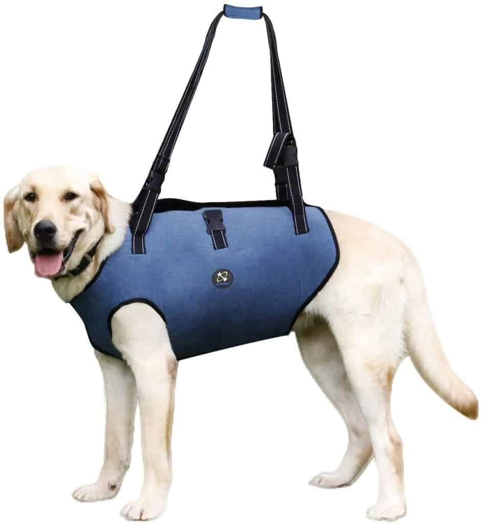 Coodeo Dog Lift Harness For Pet Support & Rehabilitation