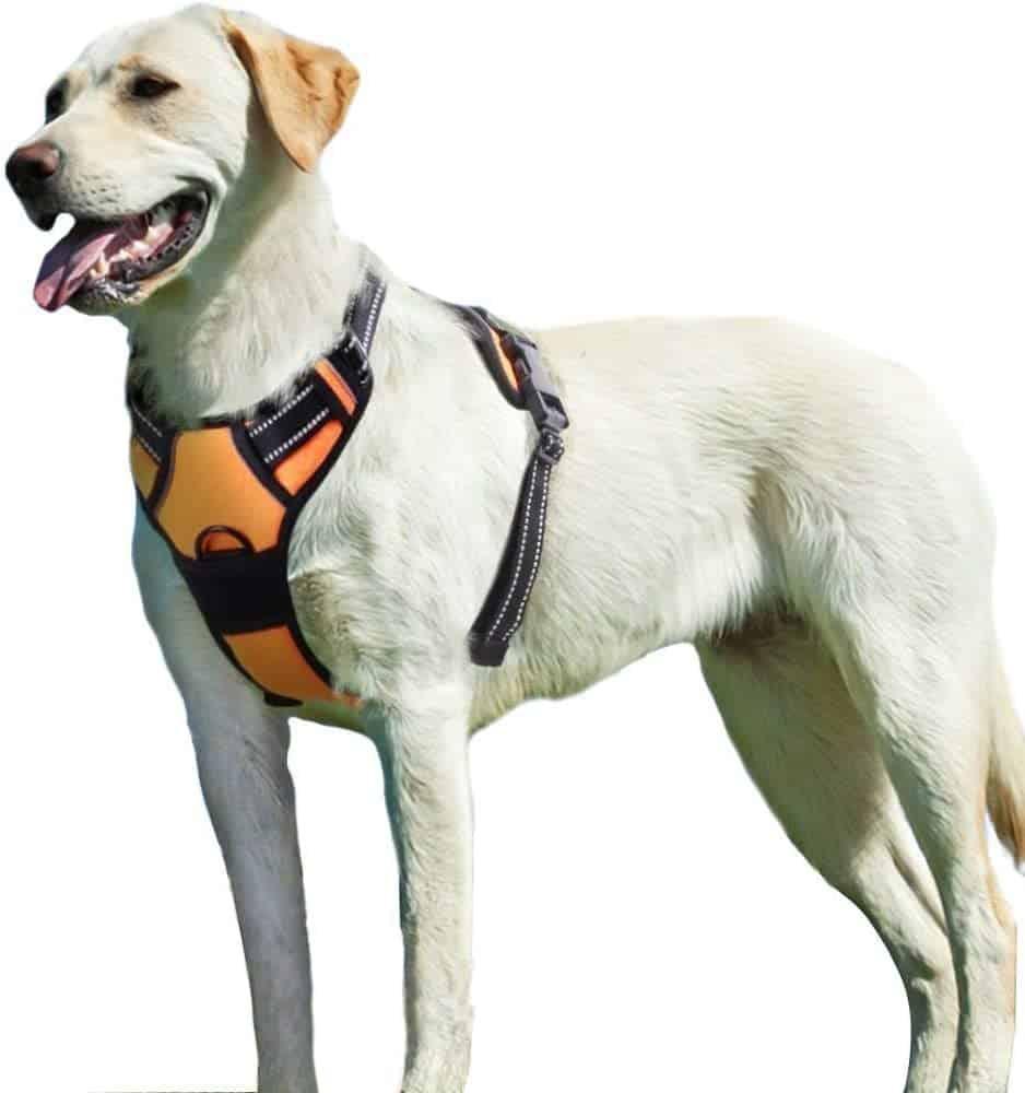 Eagloo Dog No Pull Dog Harness